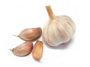 garlic oil ear relief